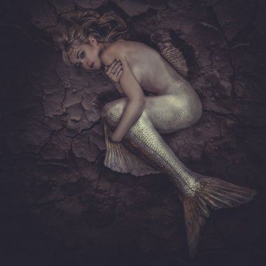 Mermaid trapped in sea of mud