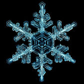 Természetes hópehely