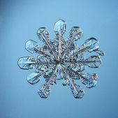 Természetes hópehely makró