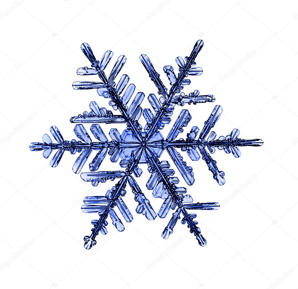 Natural Christmas snowflake isolated on white background