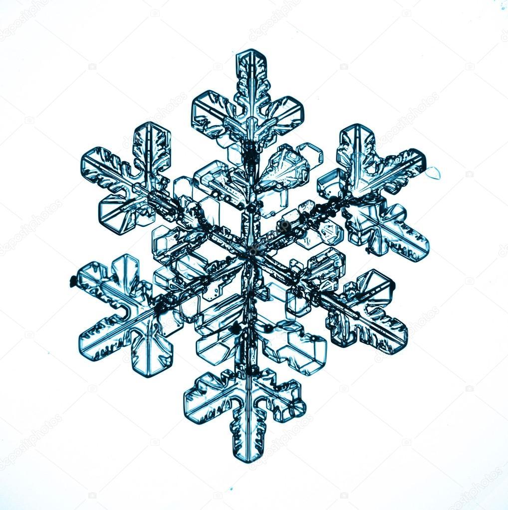 снежинки на белом фоне картинки