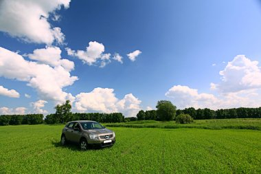 Crossover vehicle in the field