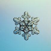 Fotografie Sněhová vločka ledové krystaly