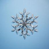 Hópehely jégkristályok