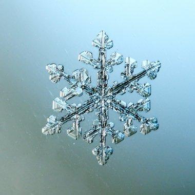 Macro snowflake