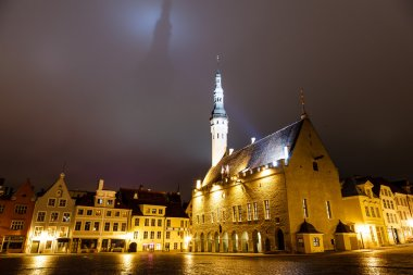 Tallinn Town Hall at Night Casting Shadow in the Sky, Estonia