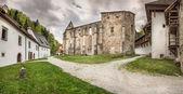 Carthusian Monastery - panorama