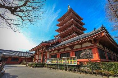 Pagoda in Asakusa temple Tokyo, Japan