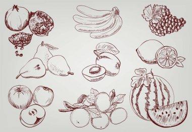 Set of fruits