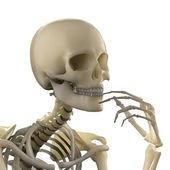 myšlení skelet