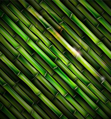 Background with bamboo