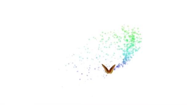 Kouzelný barevný motýl