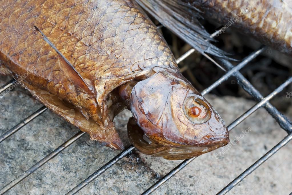 Копченая рыба на барбекю финские печи для барбекю и шашлыка