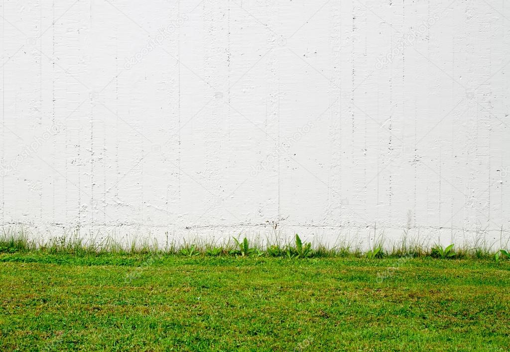 Green grass and white wall