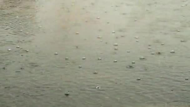 gocce di pioggia sulla superficie dellacqua