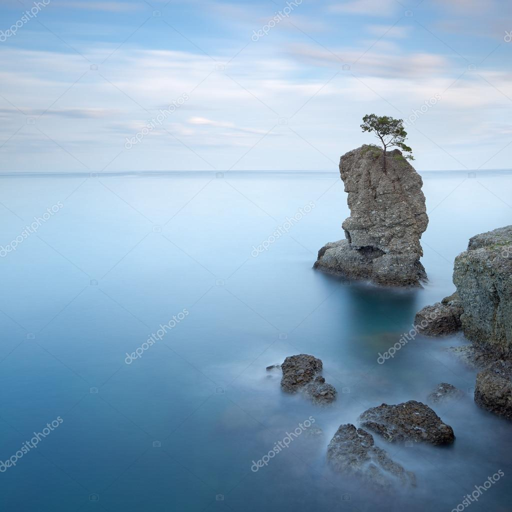 Portofino park. Pine tree rock. Long exposure. Liguria, Italy
