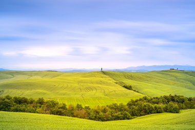 Tuscany country landscape, cypress tree and green fields. San Quirico Orcia, Italy, Europe. Long exposure photography stock vector