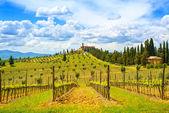 Toskánsko, vinice, cypřiše a vesnici. venkovské krajiny, jsem