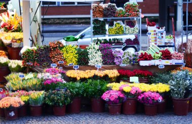 Flower baskets for sale