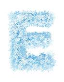 Fotografie písmeno e, mrazivý sněhové vločky