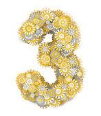 Fotografie číslo 3, heřmánek květiny