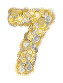 číslo 7 ze Heřmánek květiny