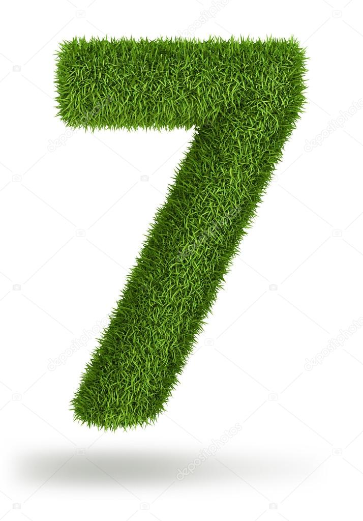 Natural grass number 7
