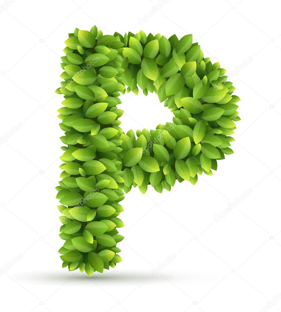 Letter P,  vector alphabet of green leaves