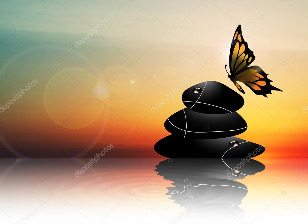 Stones and butterfly