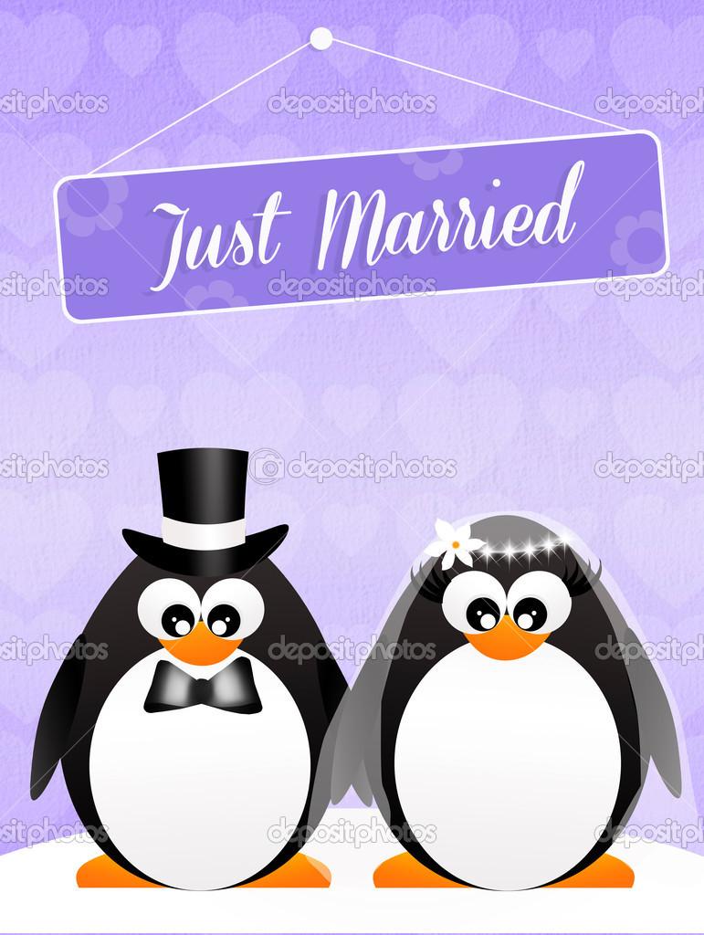 Свадебные пингвины смешные картинки