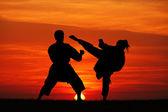 Fényképek Karate naplementekor
