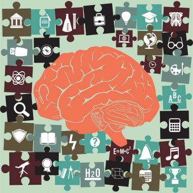 Brain and puzzles with education symbols