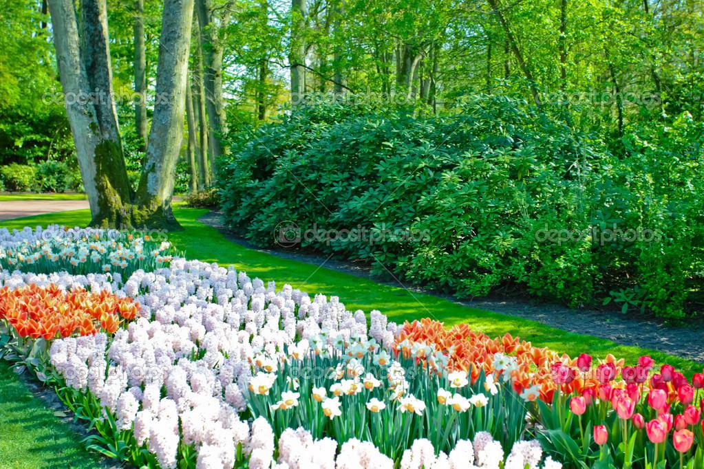 Paisaje Jardín De Primavera U2014 Fotos De Stock