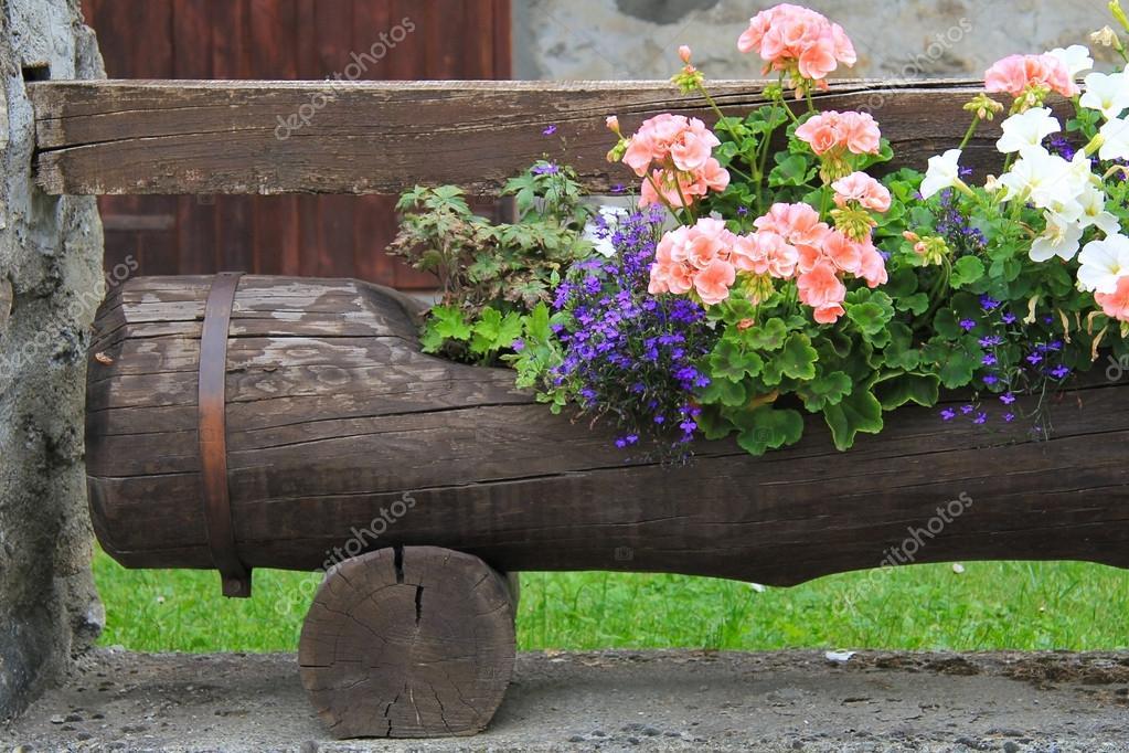 Tronc D 39 Arbre Brun Utilis Comme Un Vase Pour Les Belles Fleurs Photo 19720877