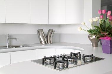 Modern and elegant white kitchen