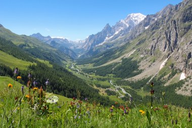 Ferret Valley and Mont Blanc panoramic view