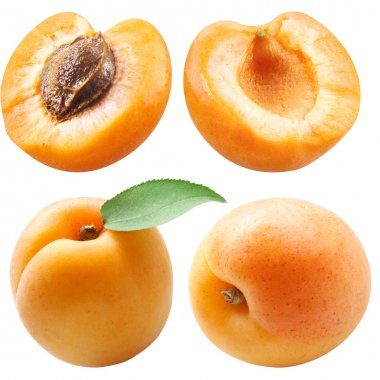collection of apricots with leaf isolated on white