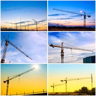 Crane collage