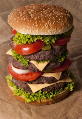 Big beef burger with vegetables. Selective focus on the content of burger stock vector