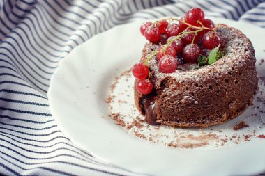 Chocolate pudding cake and red currants, selective focus stock vector