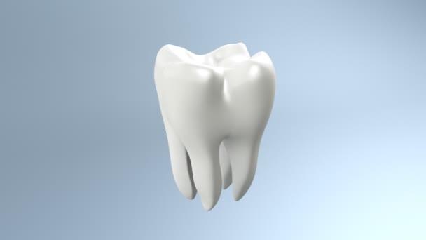weiße saubere Zähne
