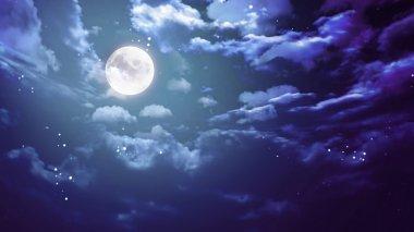 Halloween moon wide