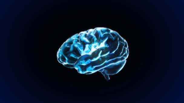 Blue X-ray Brain of biology