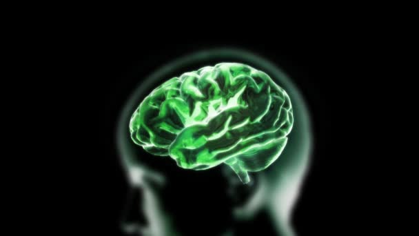 Green X-ray Brain with head of biology
