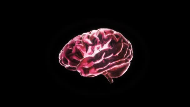 Red X-ray Brain of biology