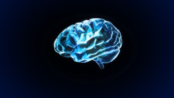 x-ray mozek biologie