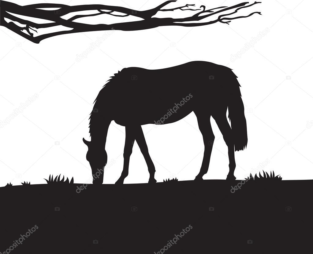 Paarden Sticker Muur.Paard Muur Sticker Stockvector C Rizwanali3d 33219545