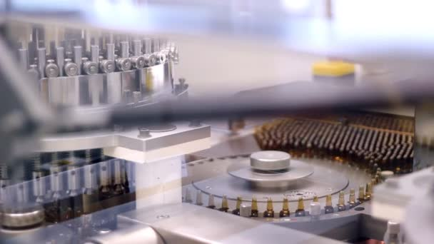 Ampule Filling Machine - Conveyor Belt