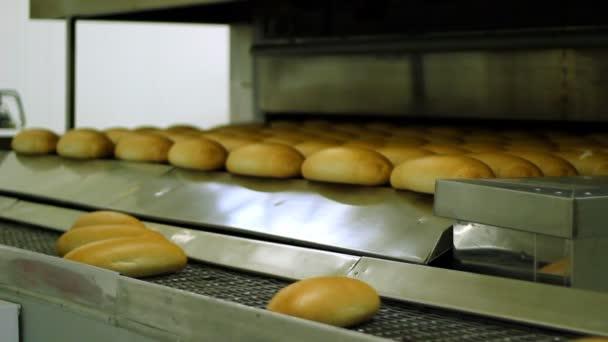 Pekařské zařízení - chlebová pec