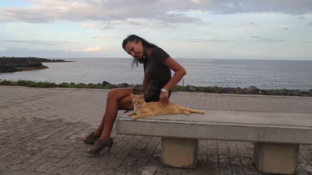 simogatta a gyömbér cat, a ocean ladndscape nő
